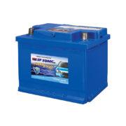 Figo Car Battery